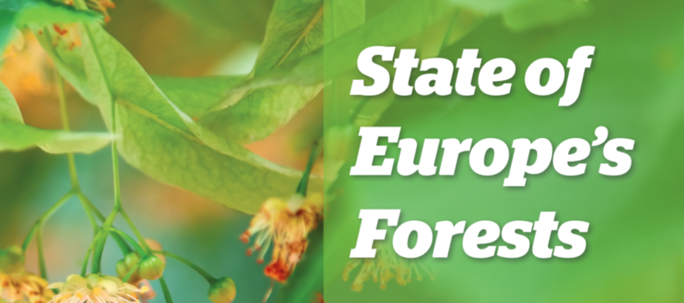 The State of Europe's Forests 2020 (SoEF 2020)