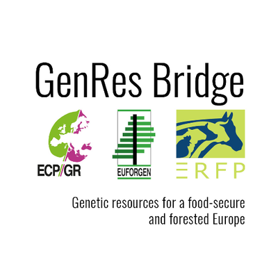 GenRes bridge
